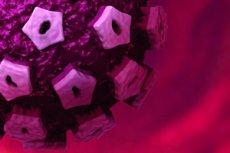 candidiasis genitális szemölcsök férfiaknál szemölcsök nem múlnak el a kezelés után