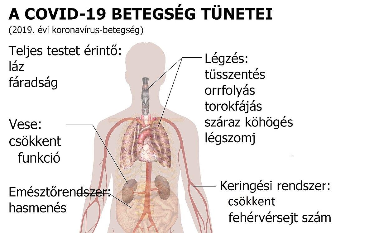 allergia és féreg kezelés