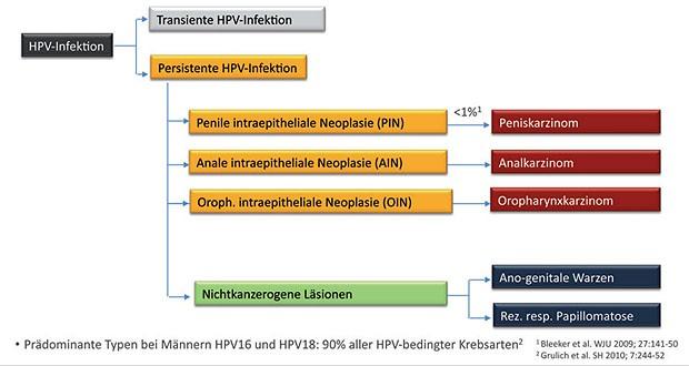 hpv impfung statisztikák tabletták a férgek megelőzésére az emberekben