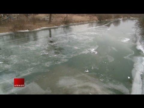 milyen férgek vannak a jégen