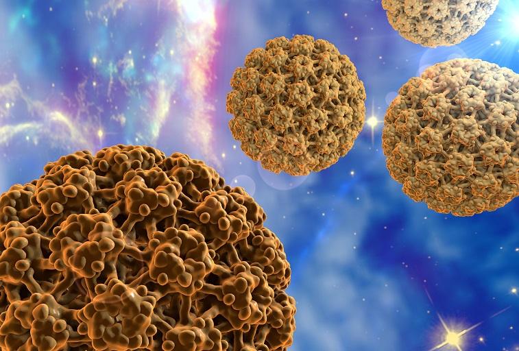 HPV fertőzés - Humán Papillóma Vírus - Dimenzió egészségközpont   Központban az EGÉSZSÉG