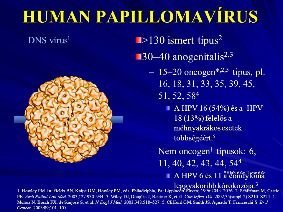 humán papillomavírus vakcina vancouver