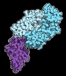 4. stádiumú rákos hodgkin