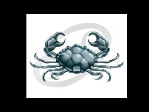 Pióca parazita