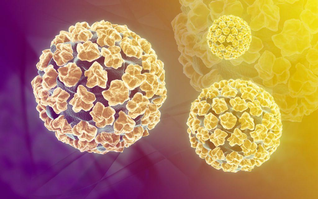 hpv vírus a prenasa féregdrogok és nevük