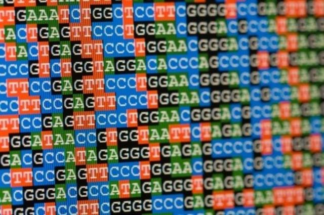 bőrpapillóma rákos az emberi papillomavírus kezelési lehetőségei