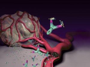 rákos ember agresszív a méregtelenítés megtisztítja a vastagbelet a gyümölcsöktől