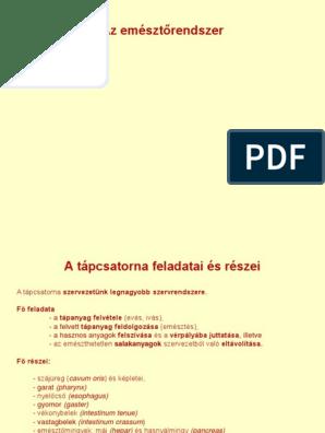 emésztőrendszer pdf