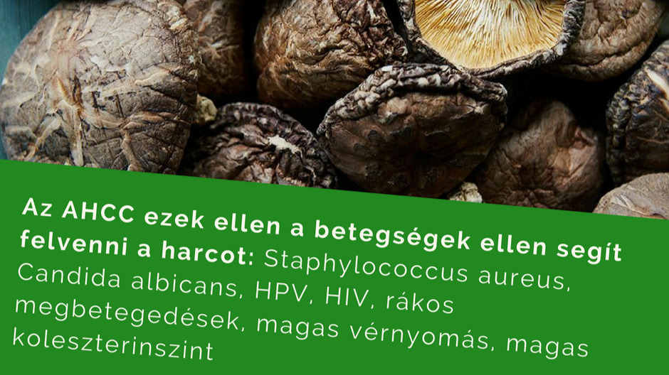 Vitamin Sziget - Betegségek / HPV vírus