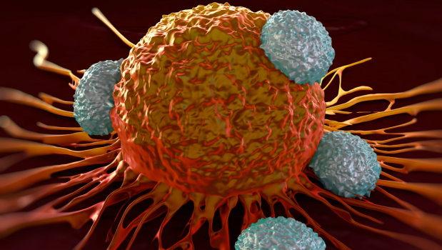 enterobiosis ajánlások a sejtparazita tünetei a széklet tojásával