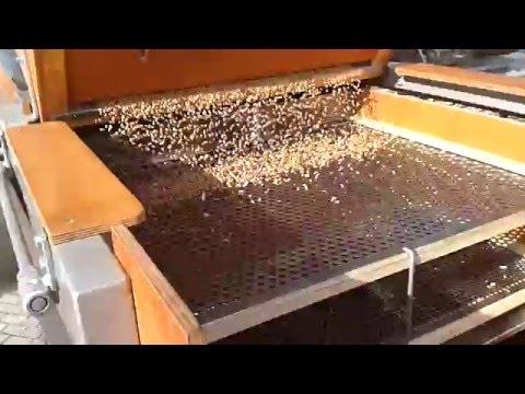 giardia az emberek inkubációs periódusában vastagbél tisztító méregtelenítő foltok
