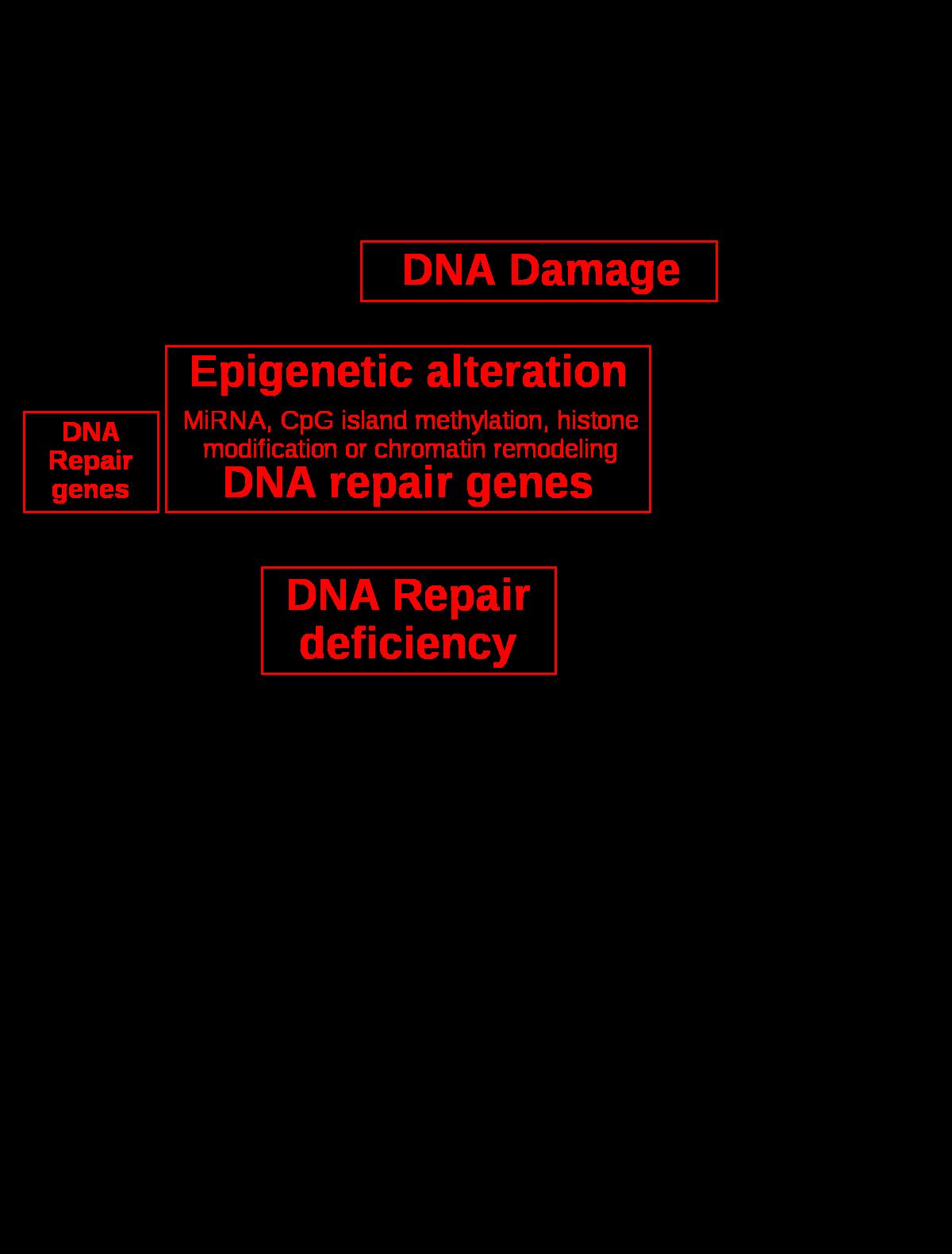 Tumormarkerek, Tumormarker vizsgálat - Medicover Laborvizsgálatok
