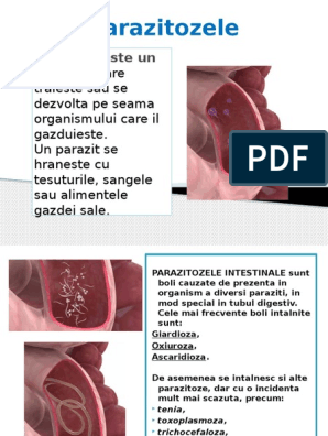 Giardia anthelmintică, Anthelmintic drugs during pregnancy. Que es papilomatosis en bovinos