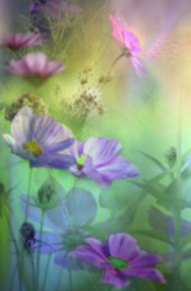 papilloma vírus almaecet szemölcs fagyasztó oldat