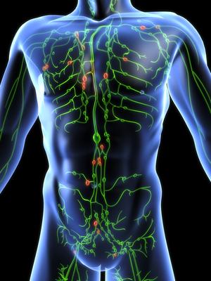 májtisztító szerek peritoneális rák talkum