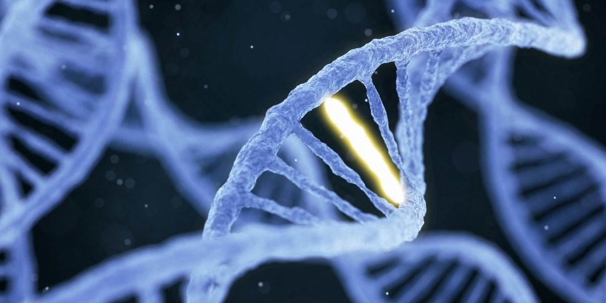 Hasnyálmirigy-daganat: Évtizedekig fejlődik!
