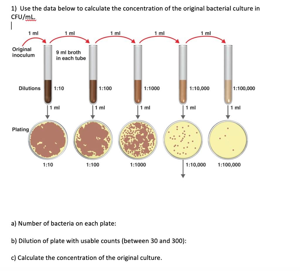 Baktériumok találhatók a vizeletben, mit jelent ez? - Prosztatagyulladás -