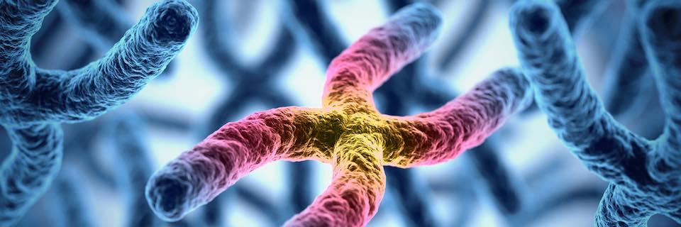 rák vagy genetikai